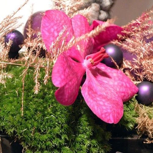 enbloemen-bloemen-winkel-L-10